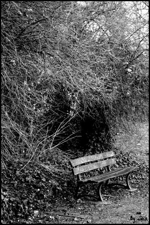 <= A m'asseoir sur un banc cinq minutes avec toi regarder les gens tant qu'y en a =>