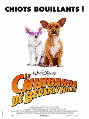Le chihuahua de Beverly Hills.