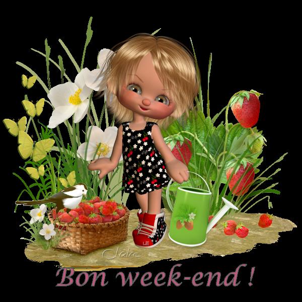 Bon Week-end  a toutes et tous !