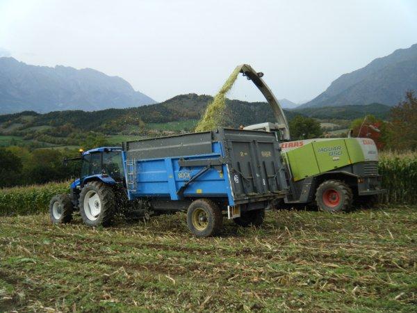 Ensilage de maïs 2010 >>> Claas et  New Holland avec Rock <<<