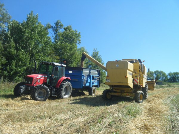 Moisson 2011 >>> New Holland et Massey Ferguson avec Rock <<<