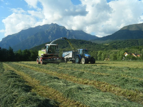 Ensilage 2011 >>> Claas et New Holland avec Brochard <<<