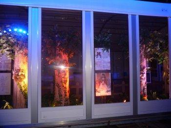 Magie de Noel Carcassonne 2012