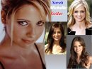 Photo de la-source-de-Sarah-Buffy