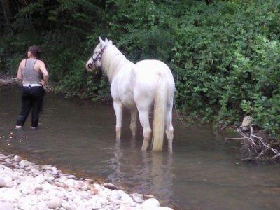 petit tour a la rivière (idole)