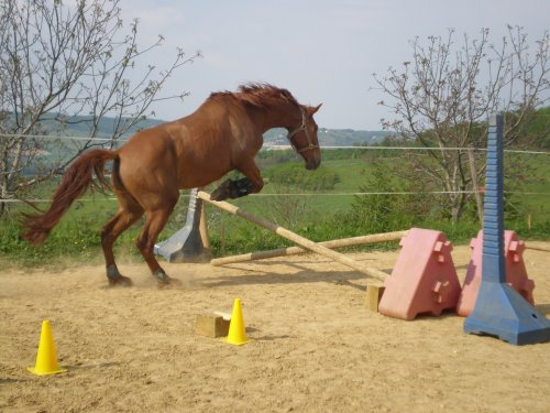 seance se saut en liberté...27.04.2011
