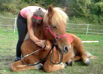 Mon poney est sans aucun doute le meilleur à mes yeux ♥