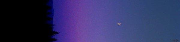 OOTD N°2 → Ariana Grande