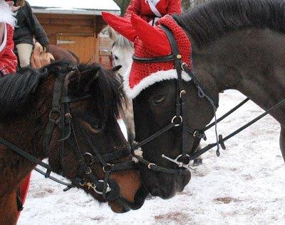 Noël 2010 ! <3