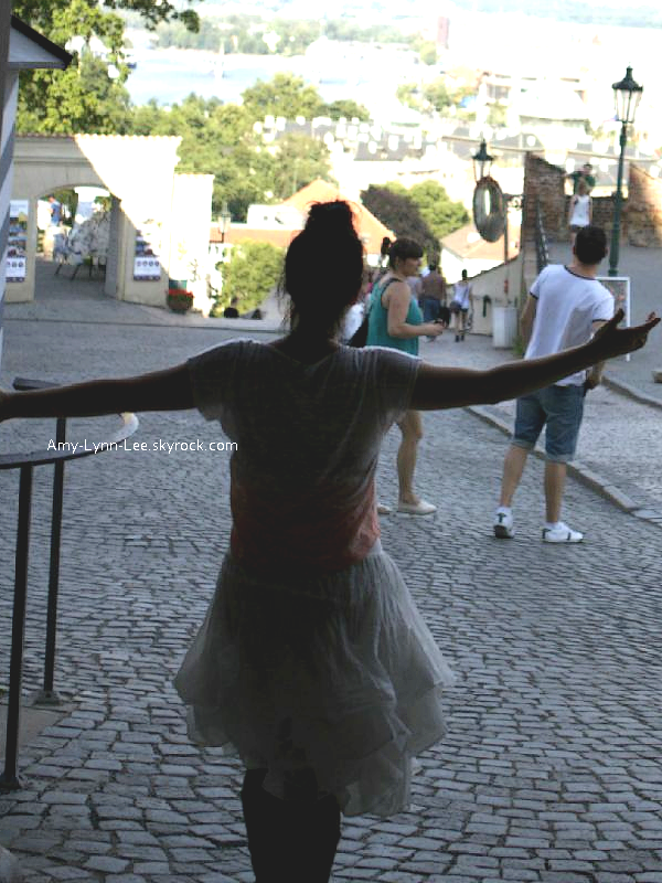 .  TWITTER - Amy est actuellement à Prague et s'y plait particulièrement. Quelle joie de vivre !   . Le look d'Amy Lee a toujours été original. Sur ces photos, elle s'affiche en jupe fidèle a ses habitudes qu'elle marie avec un tee-shirt original imprimé et des boots. Ses mélanges qui frôlent l'excentricité donnent de très beaux rendus. A copier !    .