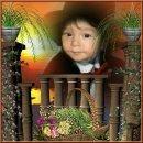 Photo de jardindeslillas2