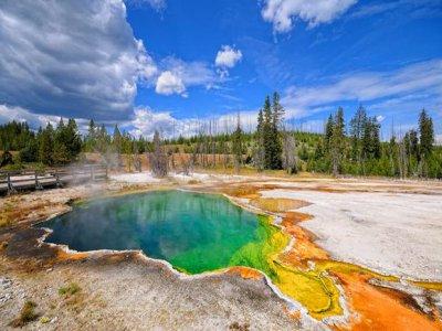 Yellowstone!!!!