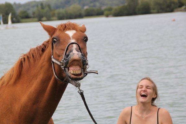 Ballade à l'étang avec Cassandre et Ultra, le 27 juillet