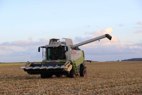 Suite battage maïs 2014