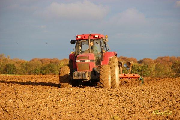 Chantier complet semis de blé