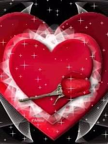 c'est la rose de l'amoure