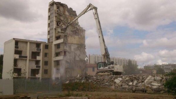 Liebherr 954 bras de démolition