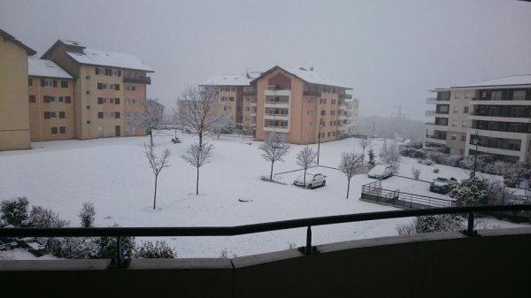 Chute de neige ❄