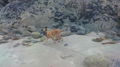 de-foulage a la plage