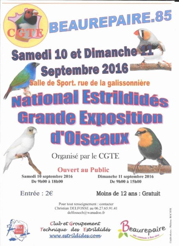 Expo d'oiseaux