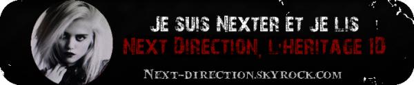 Next Direction - L'héritage 1D