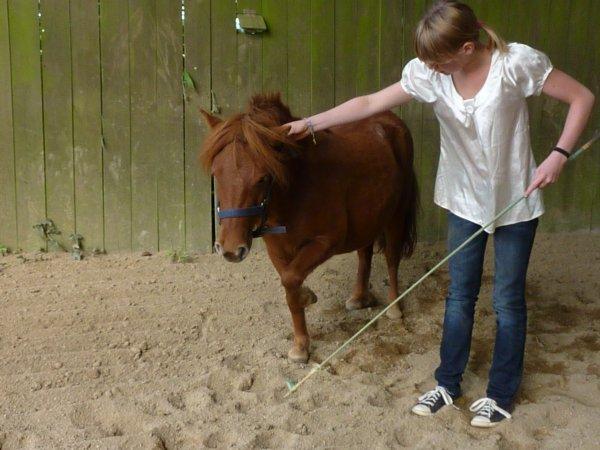 J'ai beau dire , le monde du cheval m'aura fais faire de merveilleuses rencontres ...