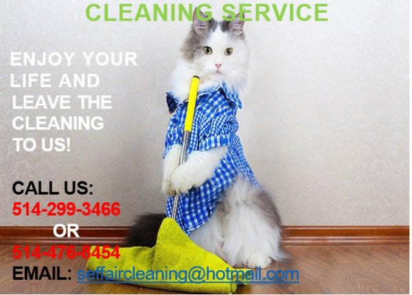 Moving ,Spiring , regular Cleaning and Cleaning after renevation