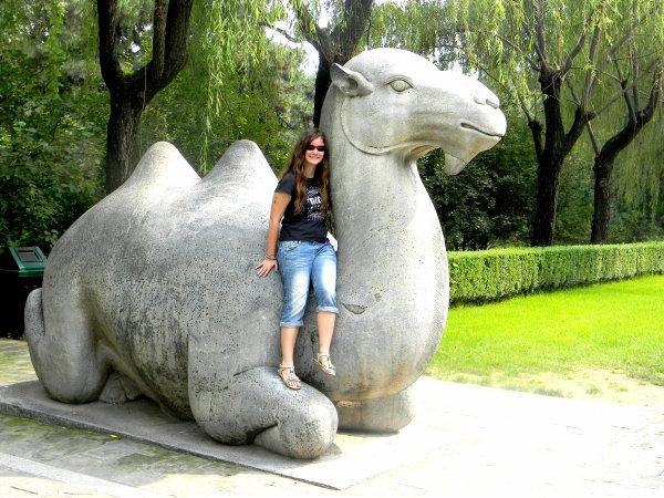 Chinese Dream (2)