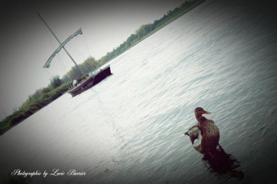 Les bords de Loire.. =)