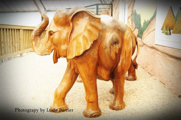 un petit éléphant ;)