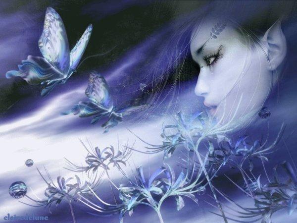 Le Rêve Papillon