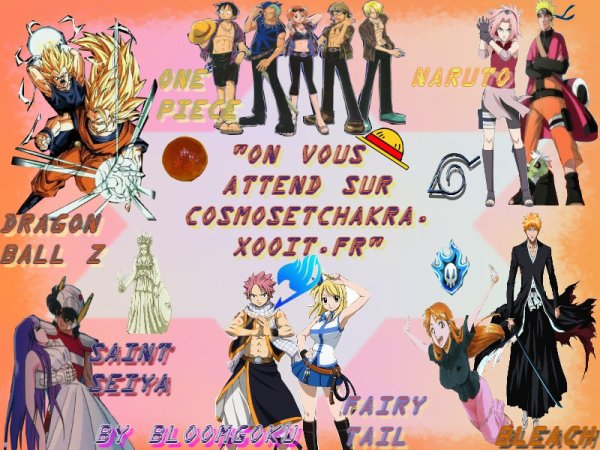 http://cosmosetchakra.xooit.fr Inscrivez-vous les gens ! ^^
