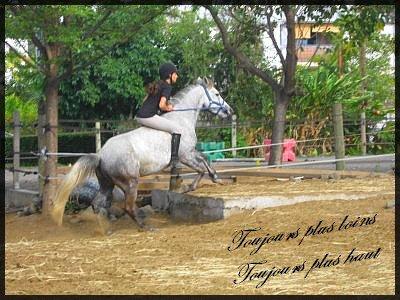 """"""" Si les chevaux nous portent c'est qu'ils sont gentils. Ils ont la gentillesse de nous supporter.  """"  ] Danse avec lui . ["""