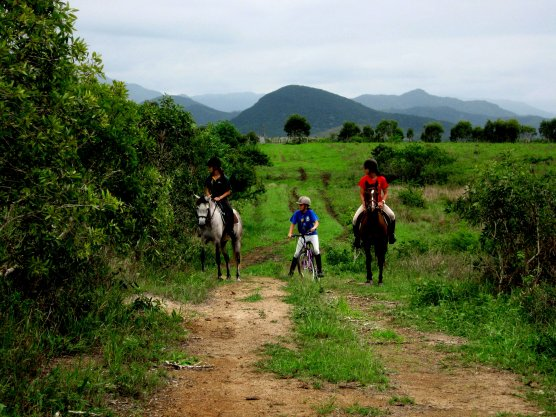 Il n'y à rien de plus fort que les liens qui unissent le cavalier a son cheval & le cheval à son cavalier <3