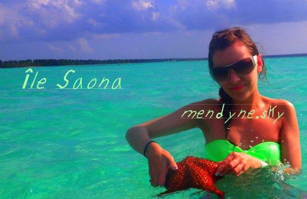 République-Dominicaine, l'île Saona et ses étoiles de mer dans la piscine naturelle turquoise, le Paradis sur terre !