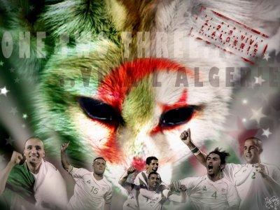 viva l'algerie  makra fi elmasrii el kalbe