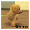 Nintendogs-CT
