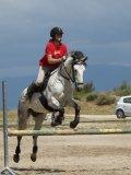 Photo de matos-cheval-07