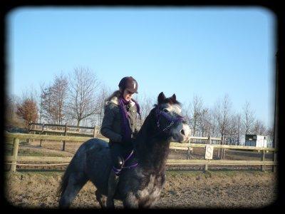 Petit poney Aux Aguets :D
