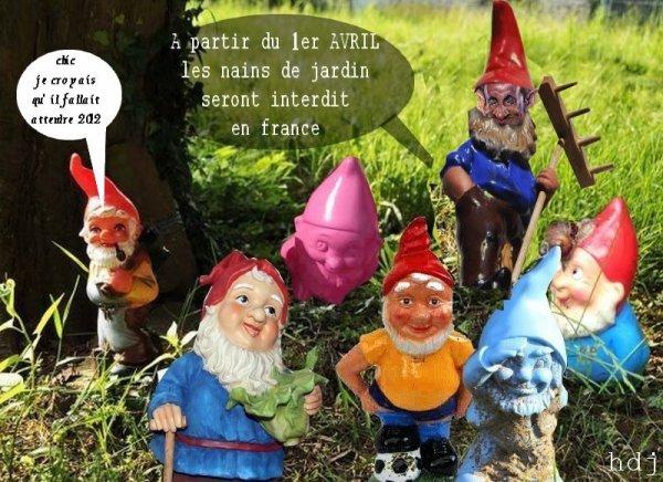 NAIN DE JARDIN - HUMOUR DU JOUR