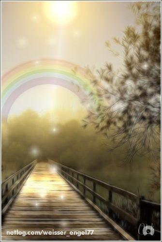 Wie ein Regenbogen ensteht