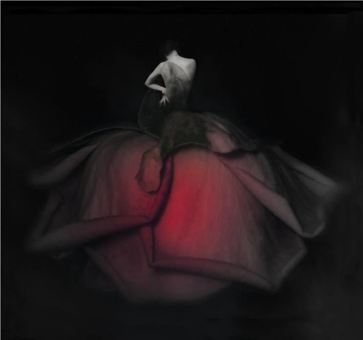 Un jour.... Une rose ...