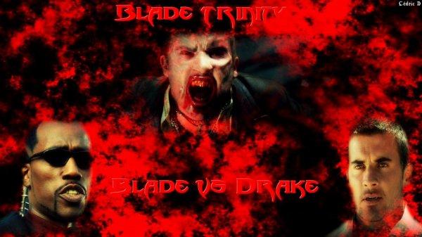 montage que j'ai fais sur Blade et Drake