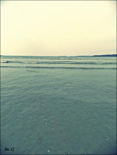 Je ne sais plus si j'ai mal ou si c'est l'habitude. Je ne sais plus si je suis foutue ou si je vis effrontément. Je ne sais plus si je coule ou si je tangue entre la mer et l'écume.  †