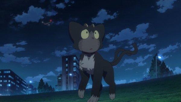"Présentation de ""Rin Okumura""."