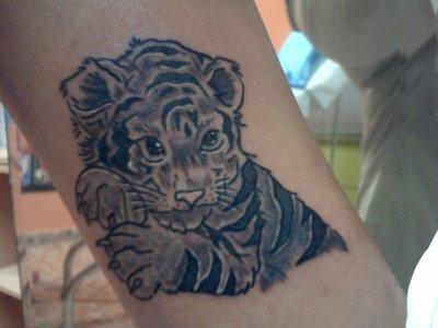 Bebe Tigre Noir Et Blanc Blog De Kuties