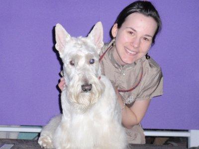 Education et toilettage canin  à domicile Cath and Dog Province du Luxembourg