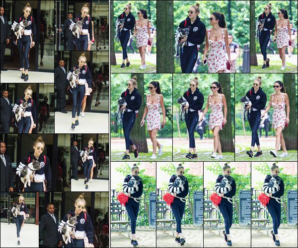 - '-14/06/17-' ◊Gigi Hadid a été aperçue alors qu'elle venait de sortir de son appartement situé à Manhattan. C'est avec son chien Stich dans les bras que nous retrouvons Jelena accompagnée de Leah au «Tompkins Square Park » à New-York. -