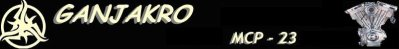 nouveautées 2011 : HARLEY SPORSTER 1200 CUSTOM
