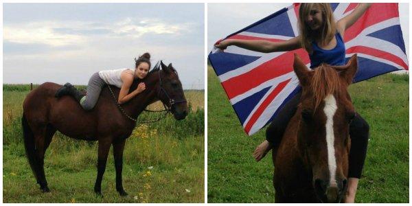 Vous êtes passionner par les chevaux ? Cette page et pour vous !♥